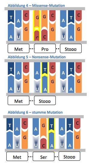 Mutationsarten